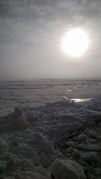 Vacker dag i Arktis