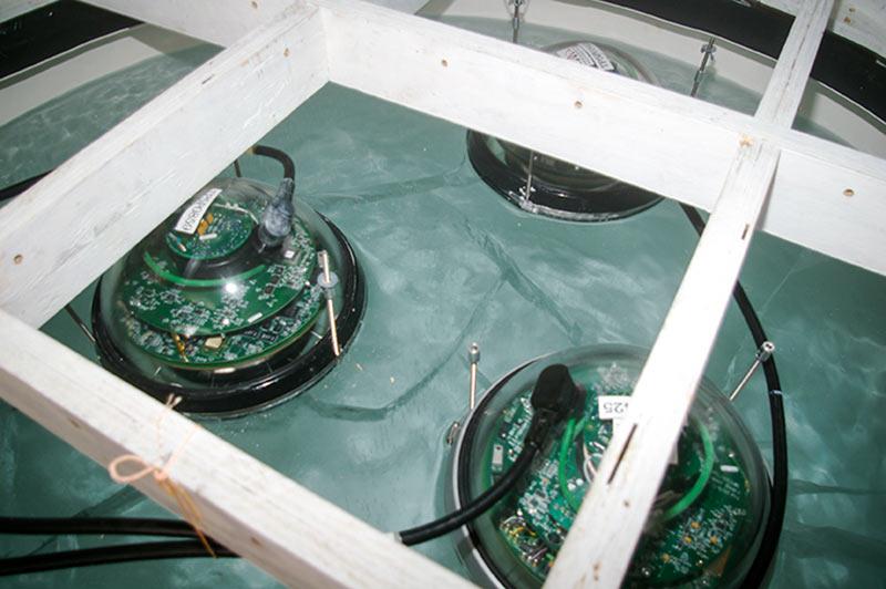Ljusdetektorer på plats i isblocket. Ovanför isen ses en del av de träramar som håller blocket på plats i fryscontainern. Foto: Allan Hallgren
