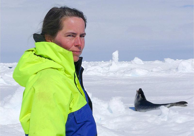 Karin Hårding is about to sample a seal. Photo: Caroline Gennser
