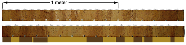 Two sections from core HLY0503-12JPC retrieved from the Mendeleyev Ridge (figure 1). The distinct dark cycles characteristic for central Arctic Ocean sediment stratigraphy can clearly be seen. The bar shows the locations of these cycles in the right section.