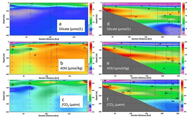 Silikatkoncentration (a och d), syrgasens avvikelse från mättnad (b & e) och koldioxidens fugasitet (c och f) i område G (till vänster) och D (till höger)