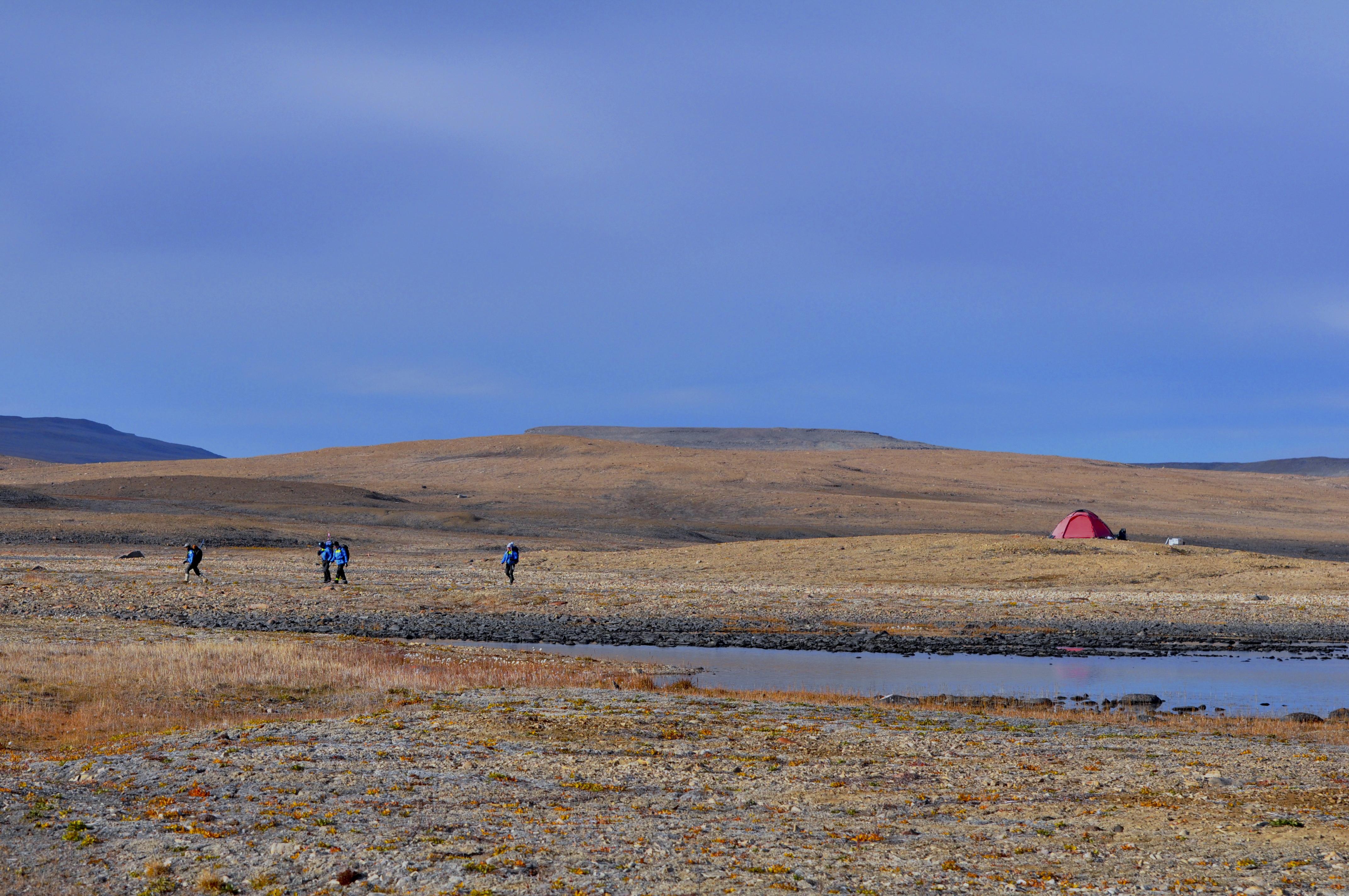Fältlägret på Washington Land. Foto: Åsa Lindgren