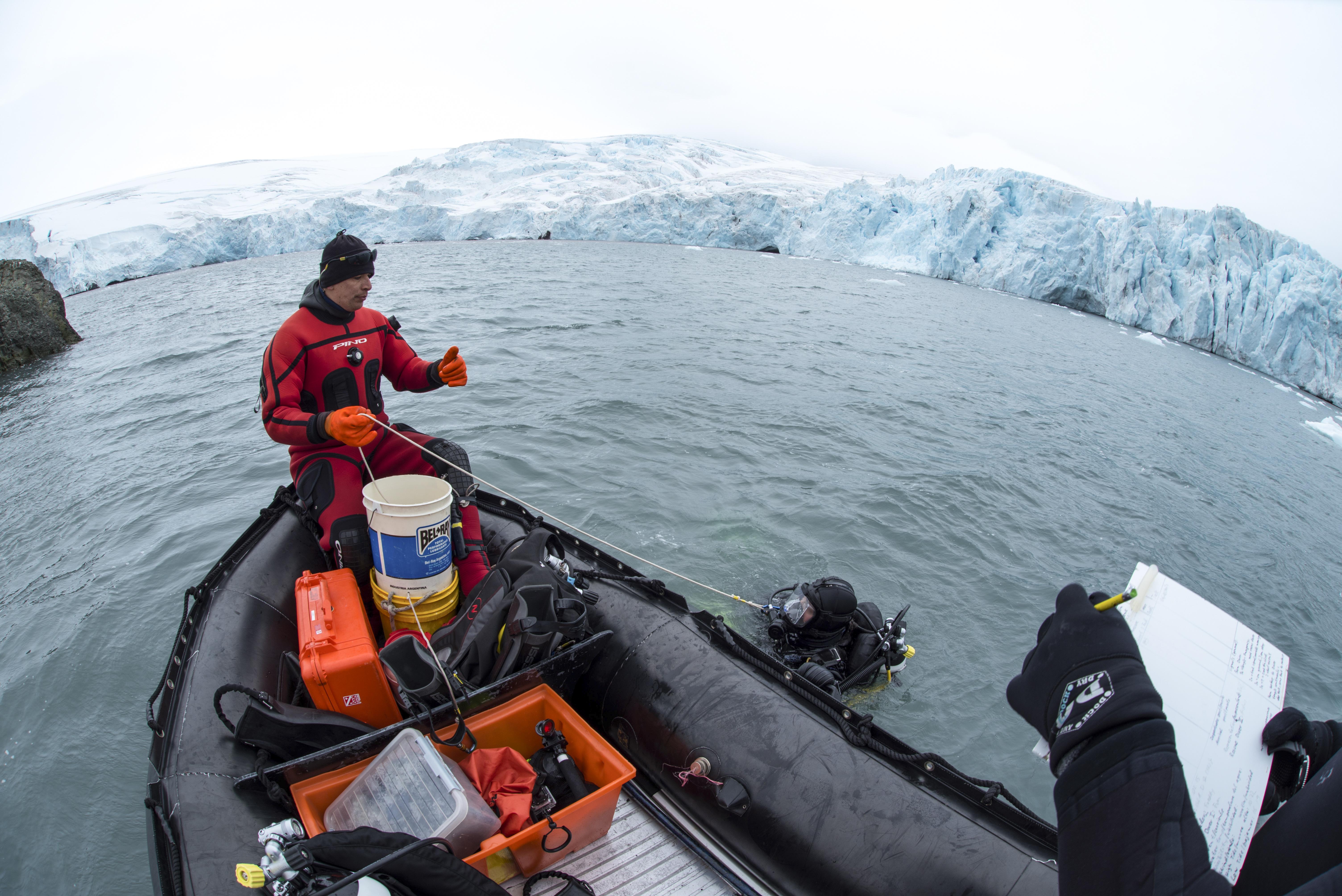 Dyka Antarktis