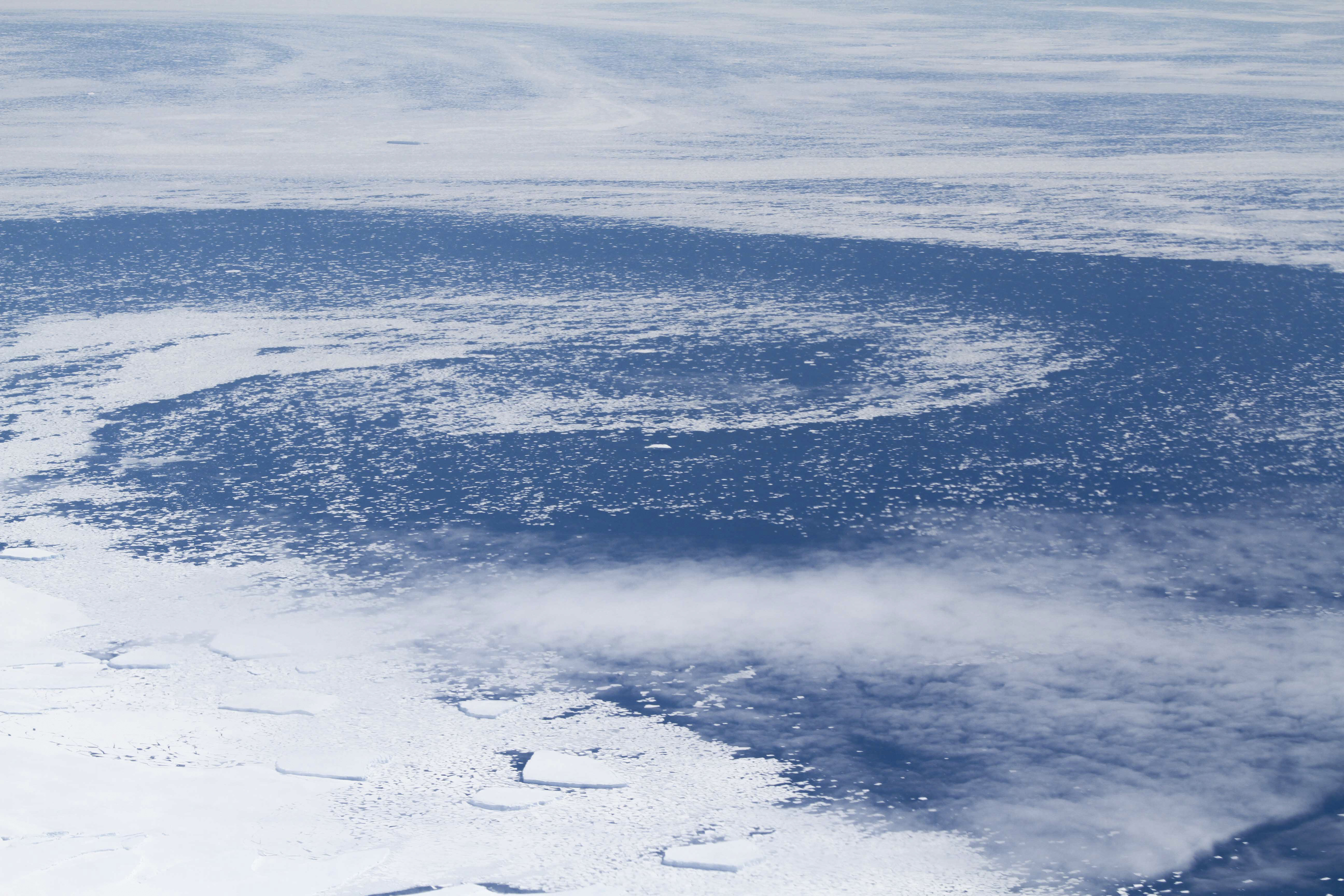 Icebergs seen from airplane