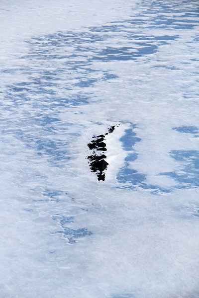 Nunatak sticking up from the ice look lie the back of an crocodile