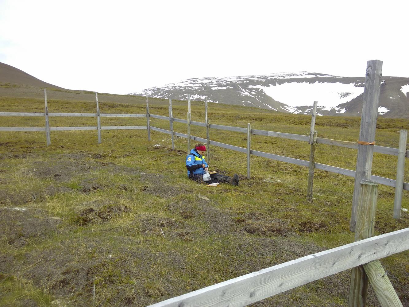 Sitter på marken och sorterar ett jordprov