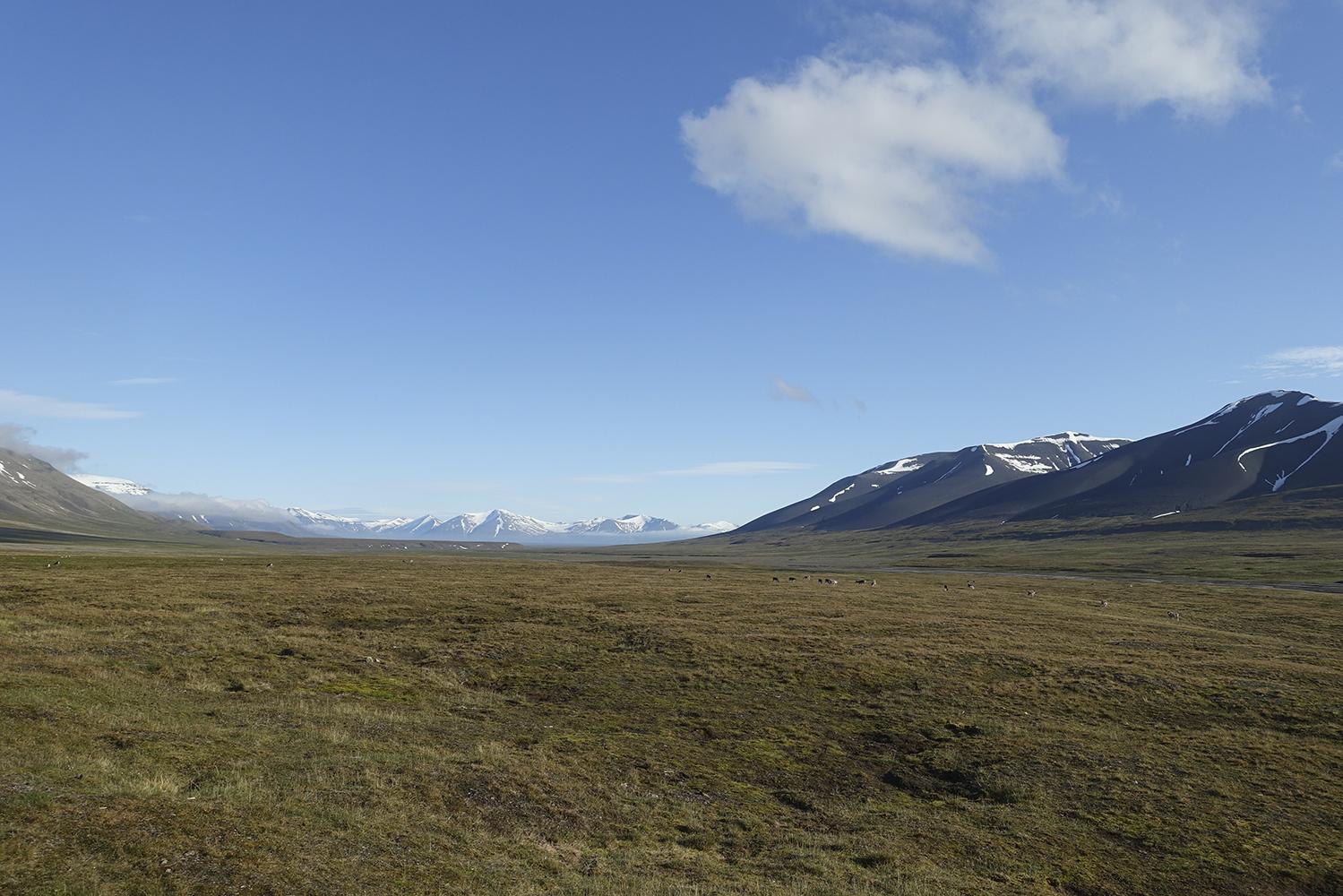 View over Semmeldalen