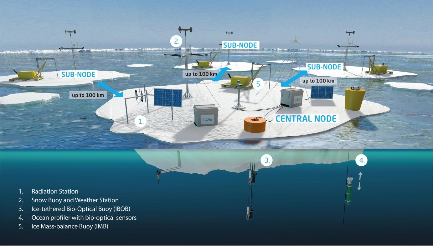 Multidisciplinary buoy array